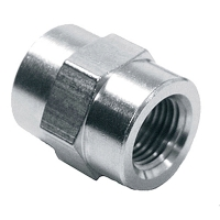 Stainless Steel FNPT Coupler
